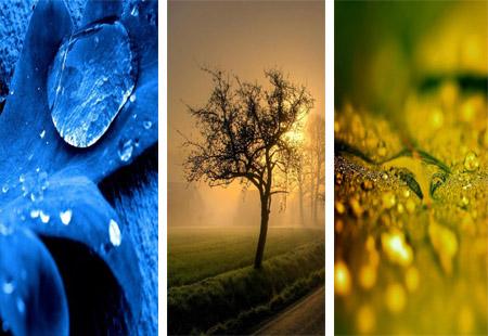 عکس های طبیعت برای پس زمینه ی موبایل