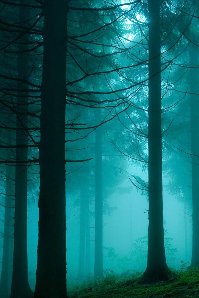 دانلود عکس طبیعت برای موبایل