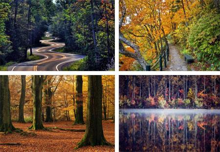 عکس هایی از قلب طبیعت